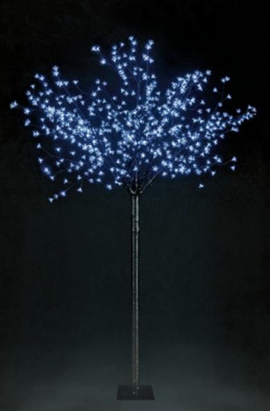snowtime-cherry-blossom-tree